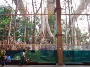 CosmoCaixa: Kid-friendly things to do in Barcelona